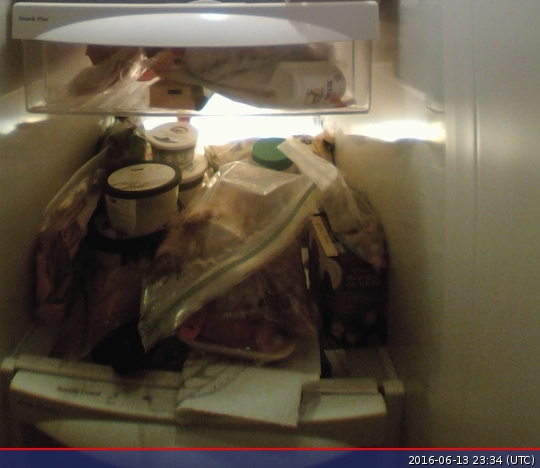 What's inside the fridge? Using a Raspberry Pi to take stock